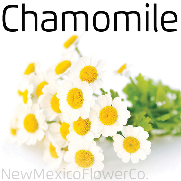 Where can I buy Chamomile in Albuquerque