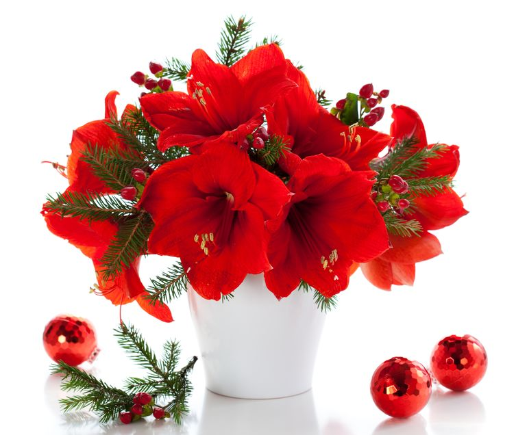 Buy Holiday Flower Centerpieces near me