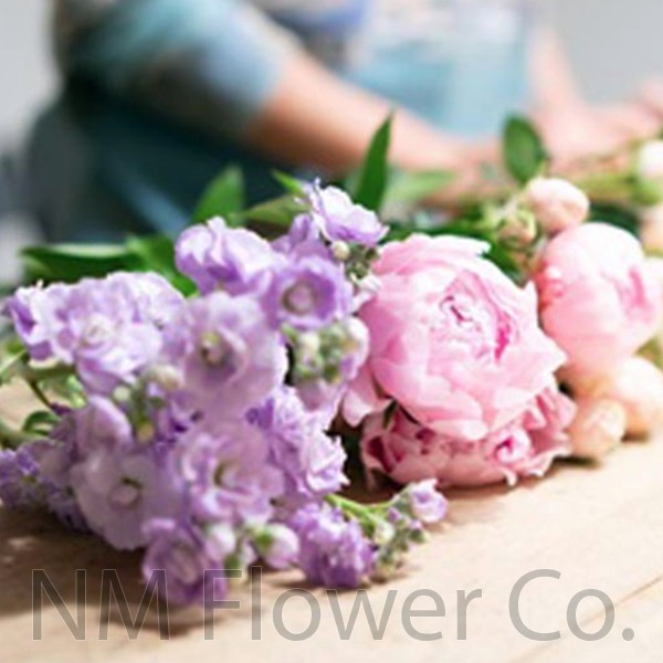 Professional Flower Care Tips ABQ